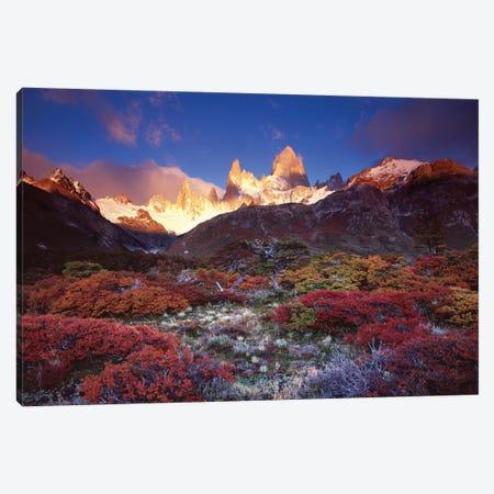 Autumn Foliage, Monte Fitz Roy, Parque Nacional los Glaciares, Patagonia, Argentina Canvas Print #GAR2} by Gareth McCormack Canvas Art