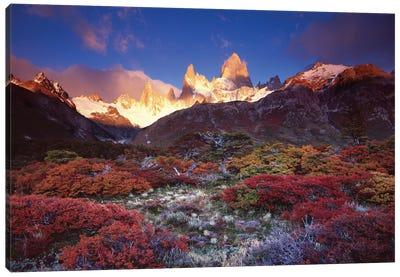 Autumn Foliage, Monte Fitz Roy, Parque Nacional los Glaciares, Patagonia, Argentina Canvas Art Print