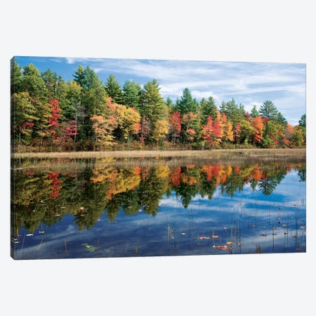 Autumn Reflection I, Ossipee River, Maine, USA Canvas Print #GAR5} by Gareth McCormack Canvas Print