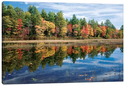 Autumn Reflection I, Ossipee River, Maine, USA Canvas Art Print