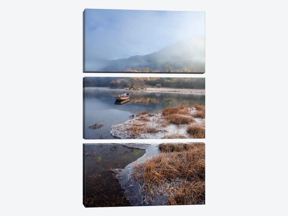 Morning Frost, Upper Lake, Killarney National Park, County Kerry, Munster Province, Republic Of Ireland by Gareth McCormack 3-piece Canvas Art