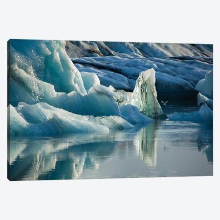 Natural Ice Sculptures, Jokulsarlon Glacier Lake, Vatnajokull National Park, Sudurland, Iceland Canvas Print #GAR65} by Gareth McCormack Art Print