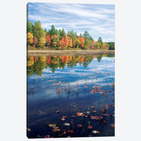 Autumn Reflection II, Ossipee River, Maine, USA Canvas Print #GAR6} by Gareth McCormack Art Print