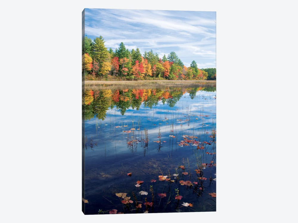 Autumn Reflection II, Ossipee River, Maine, USA by Gareth McCormack 1-piece Canvas Art