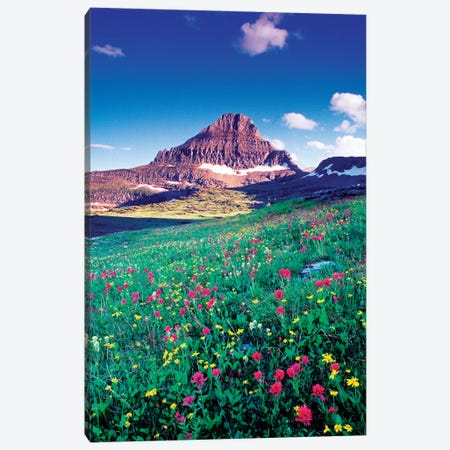 Reynolds Mountain, Lewis Range, Rocky Mountains, Glacier National Park, Montana, USA Canvas Print #GAR76} by Gareth McCormack Canvas Wall Art