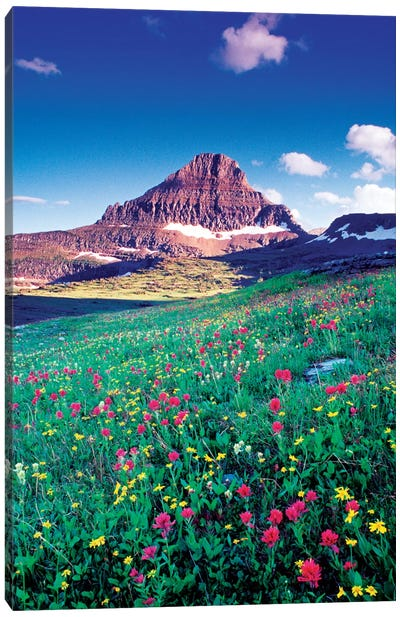 Reynolds Mountain, Lewis Range, Rocky Mountains, Glacier National Park, Montana, USA Canvas Art Print