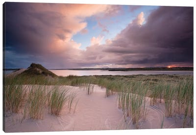Sunset II, Dunes Of Enniscrone, County Sligo, Connacht Province, Republic Of Ireland Canvas Art Print