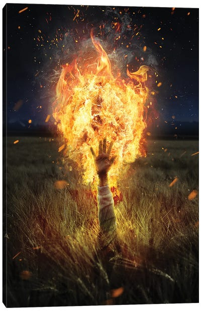 Burning Like Hell Canvas Art Print