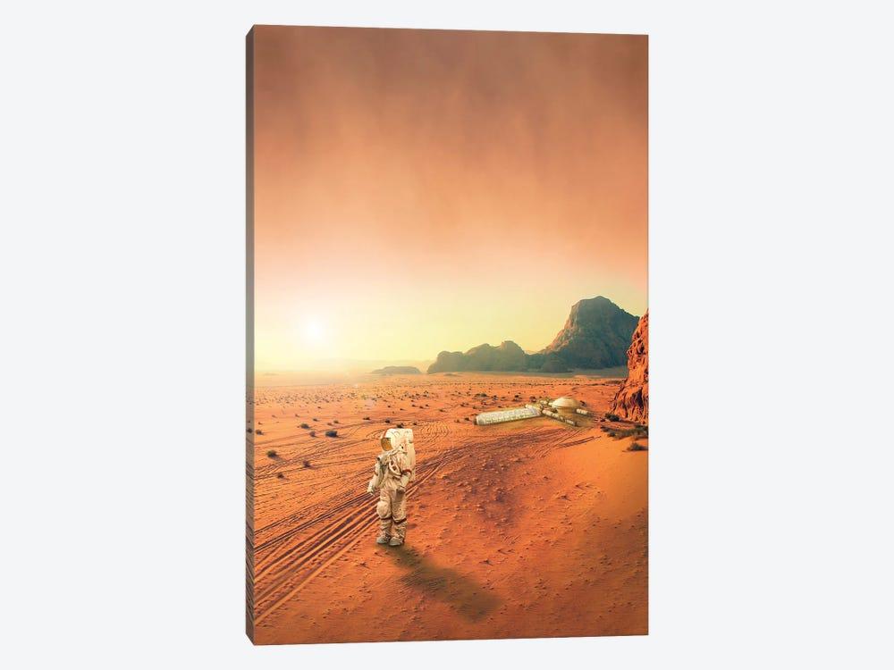 Mars by Gabriel Avram 1-piece Canvas Artwork