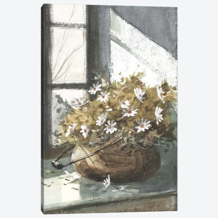 Daisies In The Window Canvas Print #GBJ1} by George Bjorkland Canvas Wall Art