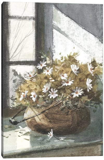 Daisies In The Window Canvas Art Print