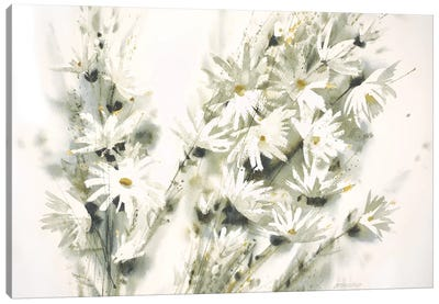 Daisy Spray Canvas Art Print