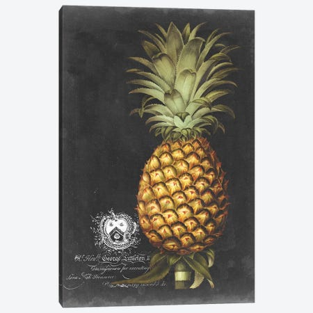 Royal Brookshaw Pineapple I Canvas Print #GBS1} by George Brookshaw Canvas Wall Art