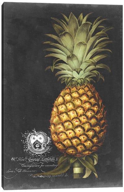 Royal Brookshaw Pineapple I Canvas Art Print