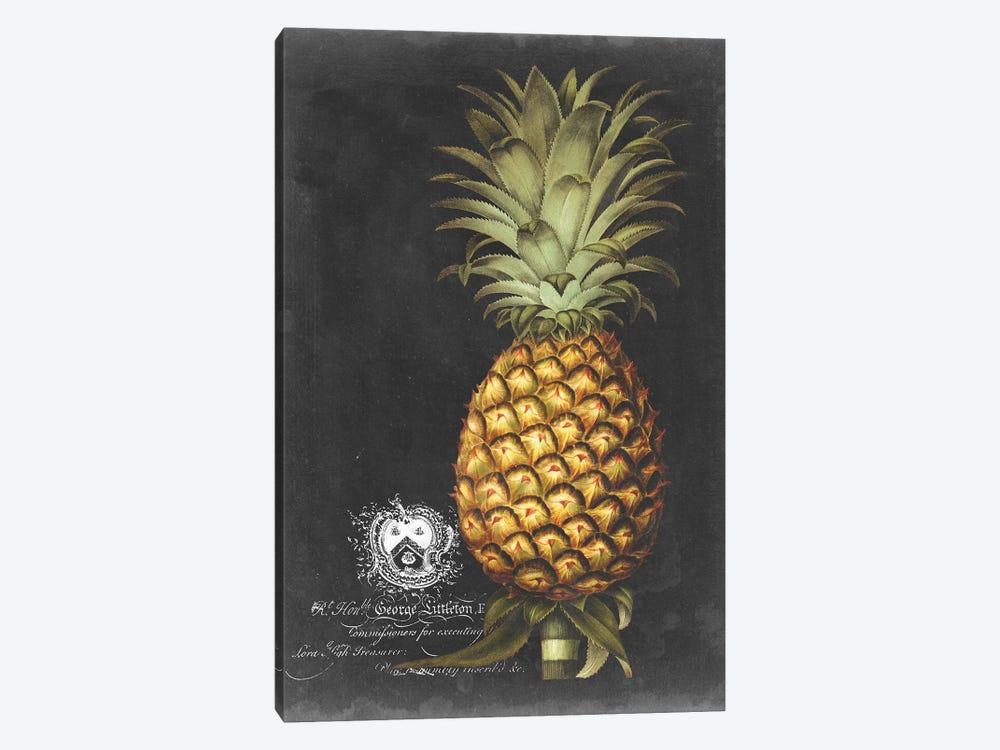 Royal Brookshaw Pineapple I by George Brookshaw 1-piece Canvas Artwork