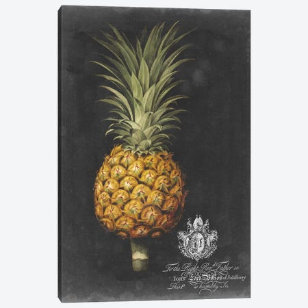 Royal Brookshaw Pineapple II Canvas Print #GBS2} by George Brookshaw Canvas Wall Art