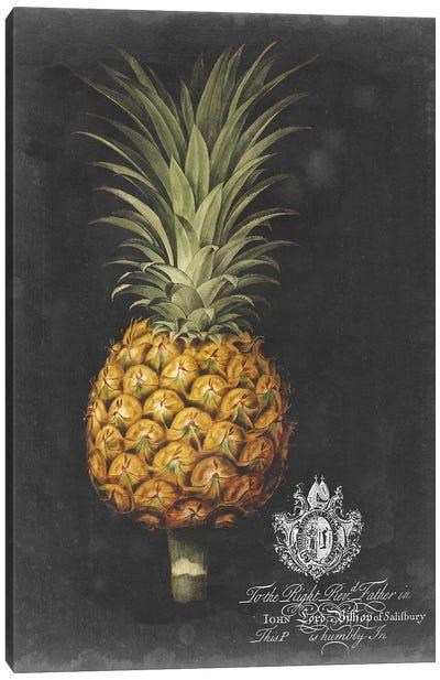 Royal Brookshaw Pineapple II Canvas Art Print