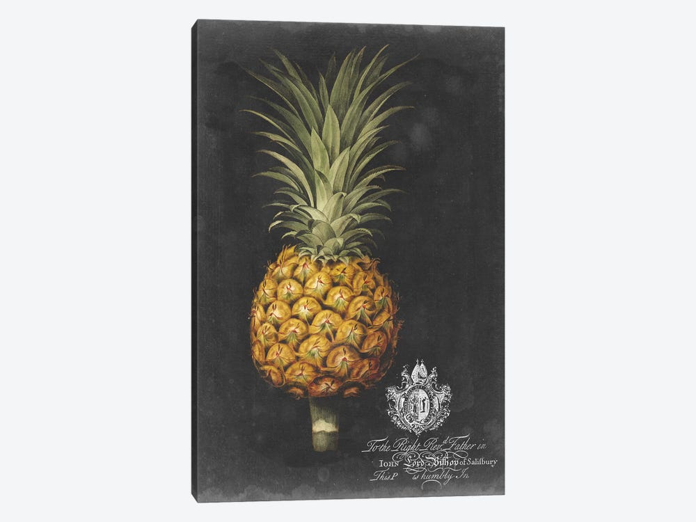 Royal Brookshaw Pineapple II by George Brookshaw 1-piece Canvas Print