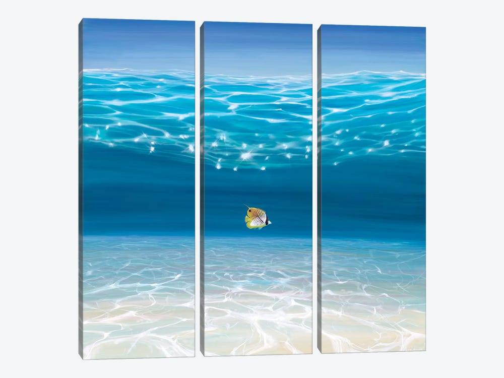 Solo In The Turquoise Sea by Gill Bustamante 3-piece Canvas Wall Art