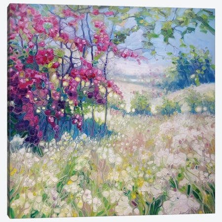 Spring Meadow In Sussex Canvas Print #GBU40} by Gill Bustamante Art Print