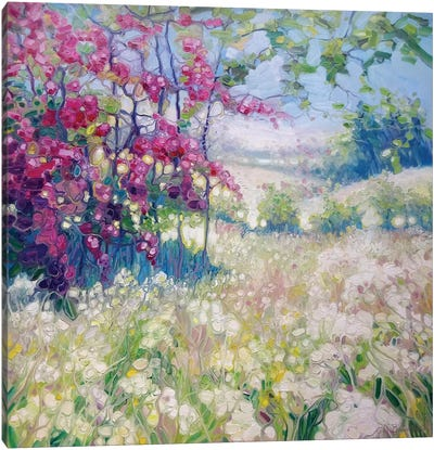 Spring Meadow In Sussex Canvas Art Print