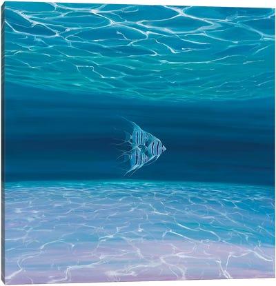 Blue Angels Blue Sea Canvas Art Print