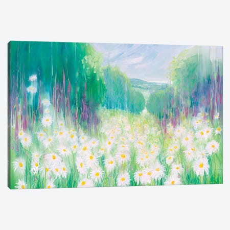 Through The Daisies To The Sea Canvas Print #GBU54} by Gill Bustamante Canvas Print