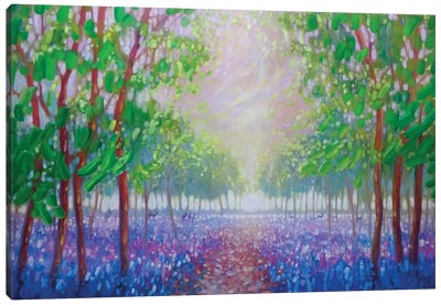 Bluebell Fields Canvas Art Print