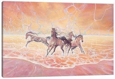 Elemental Canvas Art Print
