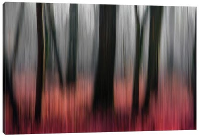 Red Wood Canvas Art Print