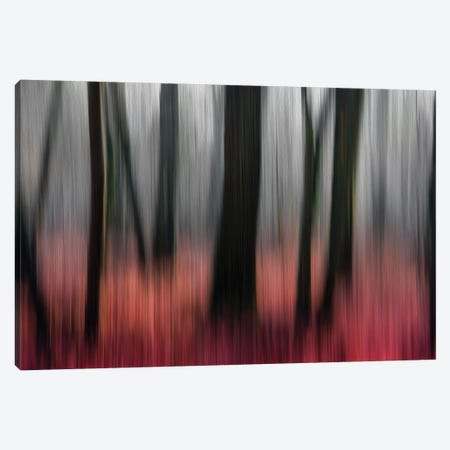 Red Wood Canvas Print #GCL6} by Gilbert Claes Canvas Art