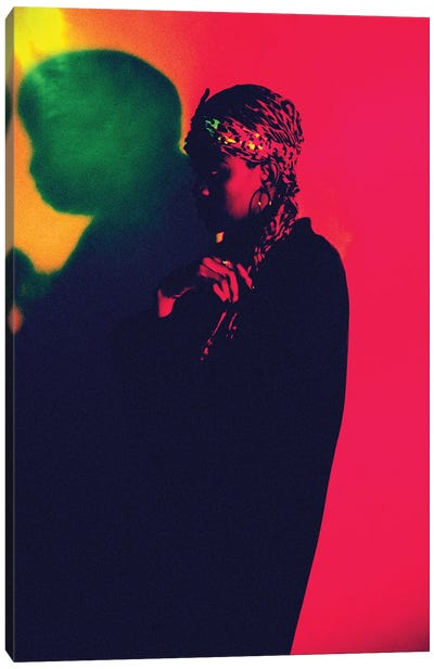 Bright Colours (2017) Canvas Art Print