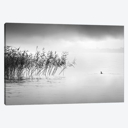 A Hazy Shade Of Winter Canvas Print #GDI3} by George Digalakis Canvas Print