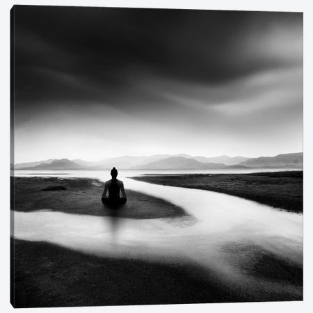 Zen Stream Canvas Print #GDI7} by George Digalakis Canvas Wall Art