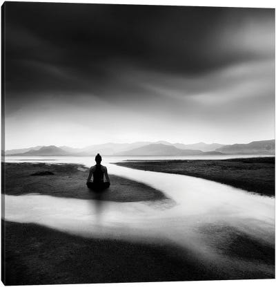 Zen Stream Canvas Art Print