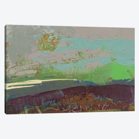 Ceide Study XVI Canvas Print #GDO11} by Grainne Dowling Canvas Artwork
