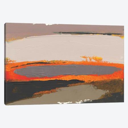 Ceide Study I Canvas Print #GDO12} by Grainne Dowling Canvas Wall Art