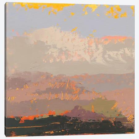 Soft Day I Canvas Print #GDO5} by Grainne Dowling Canvas Art