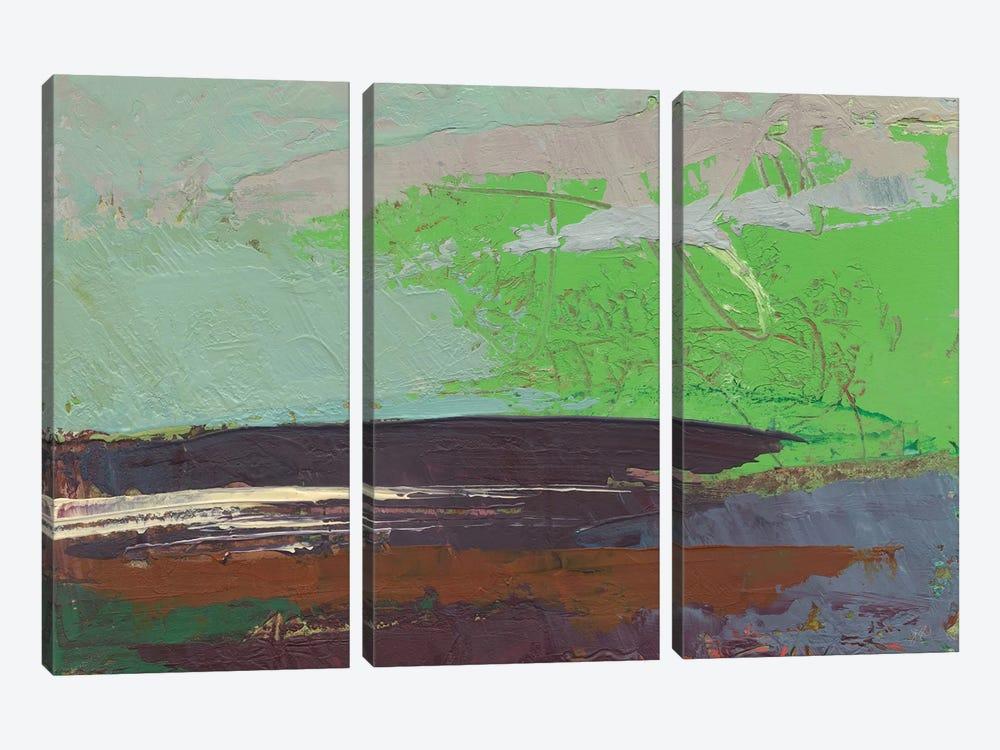 Ceide Study XIII by Grainne Dowling 3-piece Canvas Art Print