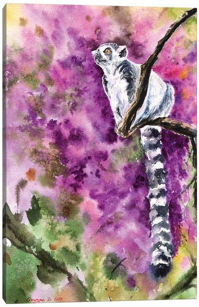 Lemur Canvas Art Print