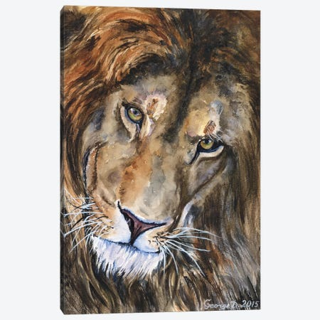 Lion II Canvas Print #GDY106} by George Dyachenko Canvas Art