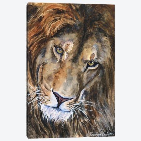 Lion II Canvas Print #GDY106} by George Dyachenko Canvas Art