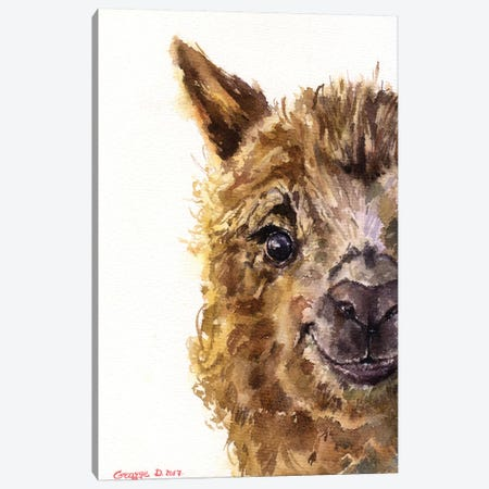 Llama Canvas Print #GDY108} by George Dyachenko Canvas Print