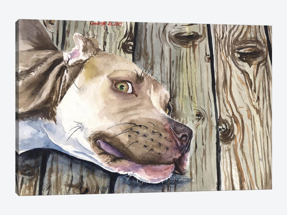 Pitbull by George Dyachenko 1-piece Canvas Print