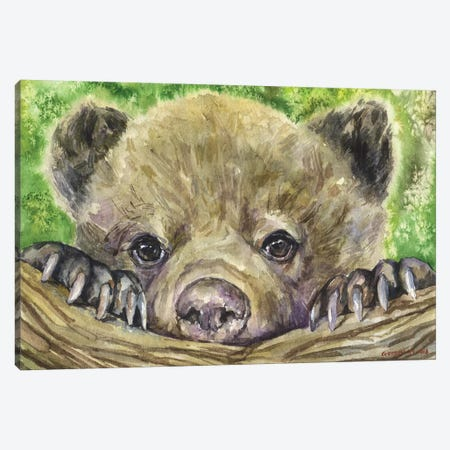 Bear Cub Canvas Print #GDY11} by George Dyachenko Canvas Wall Art