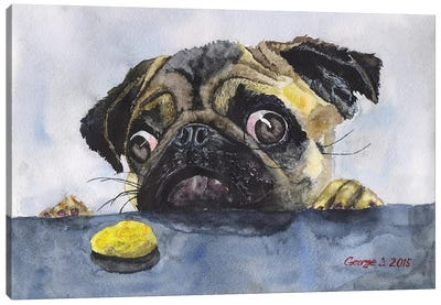 Pug And Cookie Canvas Art Print