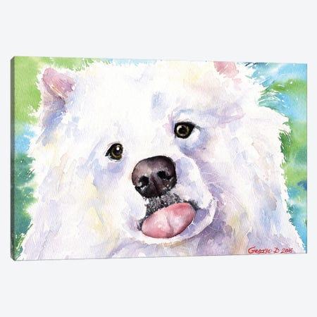 Samoyed Canvas Print #GDY129} by George Dyachenko Art Print