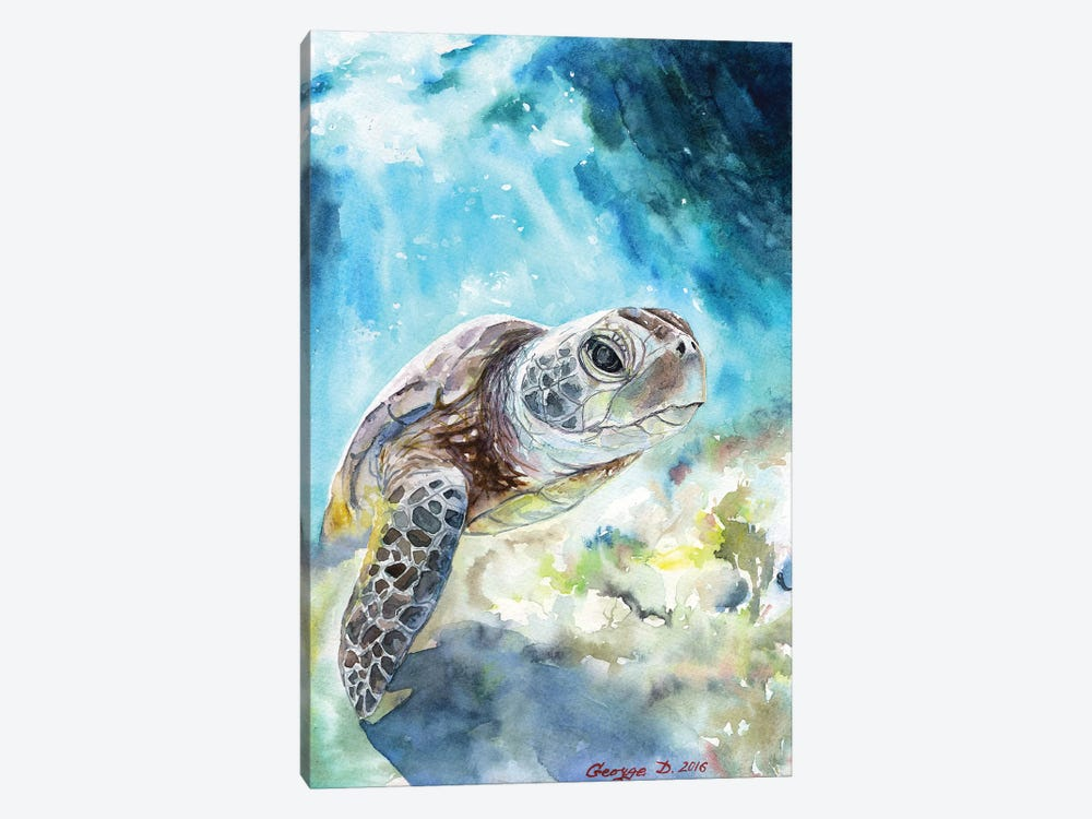 Sea Turtle by George Dyachenko 1-piece Canvas Wall Art