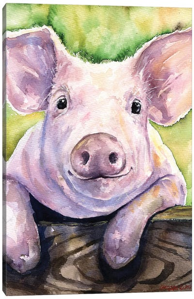 Smiling Pig Canvas Art Print