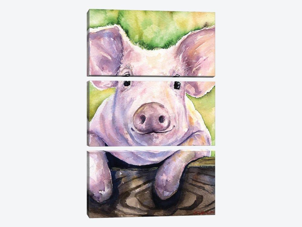 Smiling Pig by George Dyachenko 3-piece Canvas Artwork